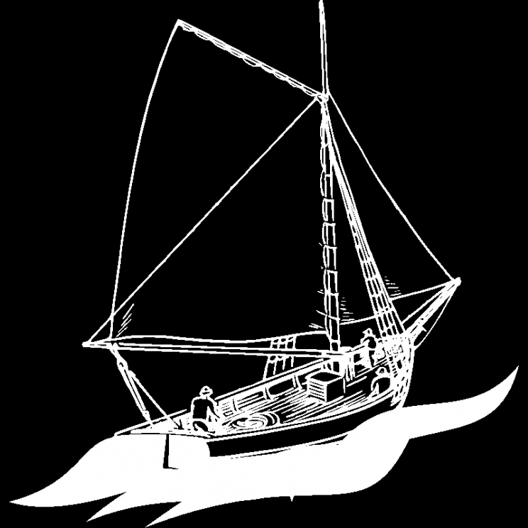 Boat sailing illustration
